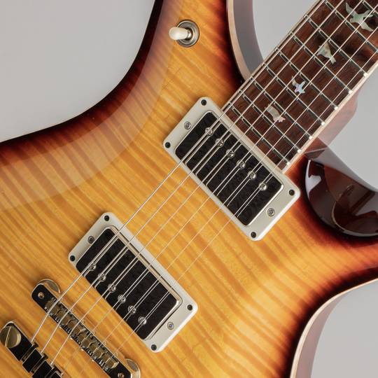 "Paul Reed Smith Private Stock McCarty 594 ""Graveyard Limited"" ポールリードスミス サブ画像13"