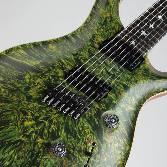 Paul Reed Smith Private Stock #5777 Custom24 7 String Multi-scale Burl Maple Top Rainforest ポールリードスミス サブ画像10