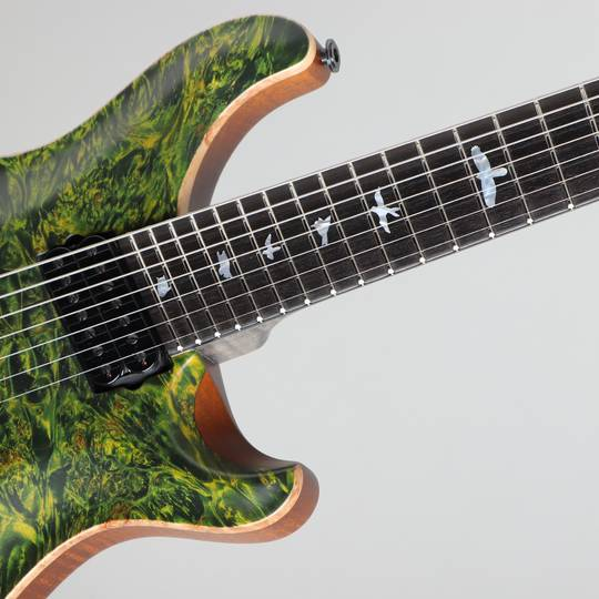 Paul Reed Smith Private Stock #5777 Custom24 7 String Multi-scale Burl Maple Top Rainforest ポールリードスミス サブ画像11