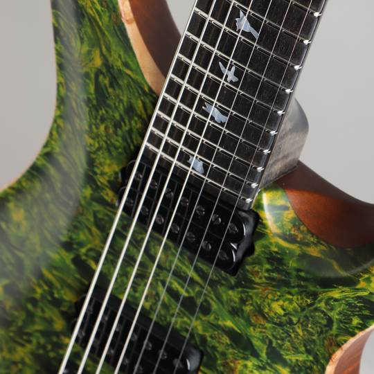 Paul Reed Smith Private Stock #5777 Custom24 7 String Multi-scale Burl Maple Top Rainforest ポールリードスミス サブ画像14