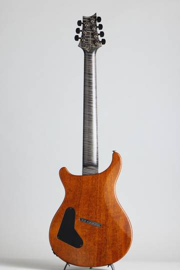 Paul Reed Smith Private Stock #5777 Custom24 7 String Multi-scale Burl Maple Top Rainforest ポールリードスミス サブ画像3