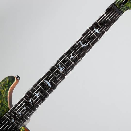 Paul Reed Smith Private Stock #5777 Custom24 7 String Multi-scale Burl Maple Top Rainforest ポールリードスミス サブ画像5