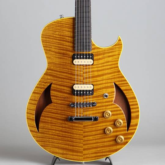 Semi-Hollow Torrefied Silver Maple/Hondurus Mahogany