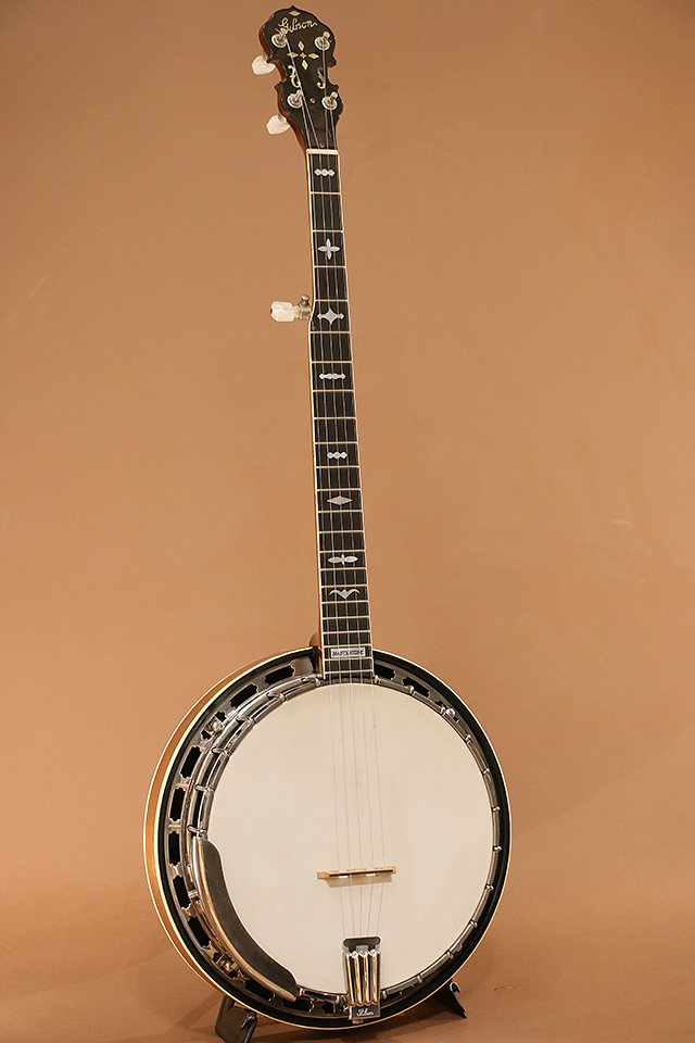 RB-250 (5-String Banjo)