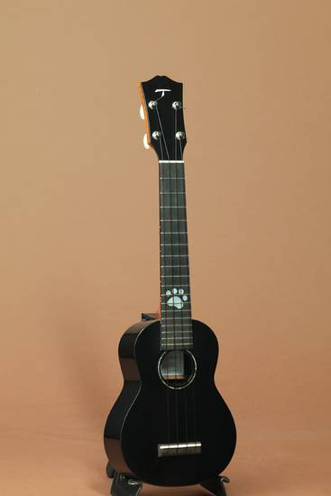 SDL-1100 Ebony Soprano Long Neck