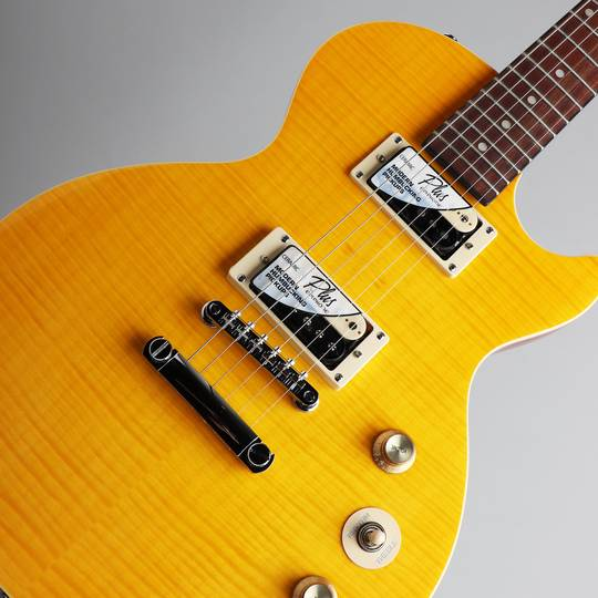 "Slash ""AFD"" Les Paul Special-II"