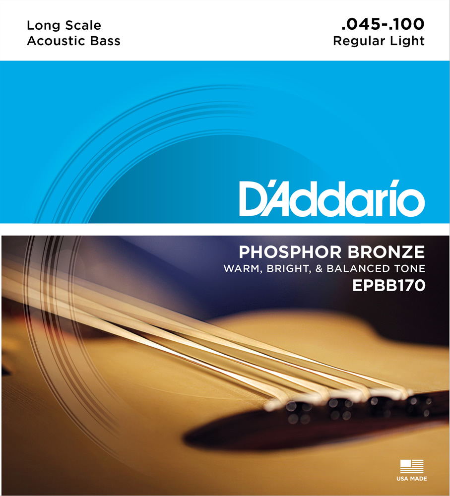 EPBB170 Phosphor Bronze Wound