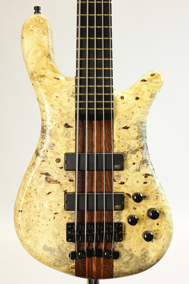 "Custom Shop Streamer Stage 1 ""Buckeye Burl Top"""