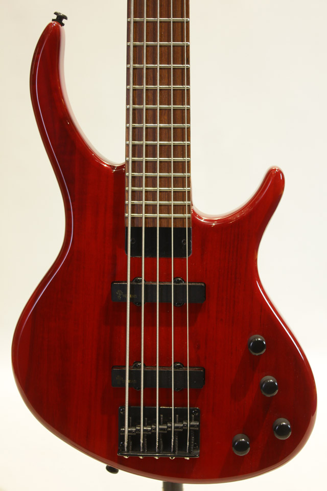 Epiphone Toby Deluxe-V Bass Gloss Trans Red エピフォン