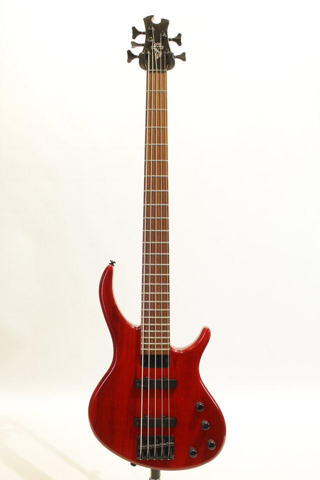 Epiphone Toby Deluxe-V Bass Gloss Trans Red エピフォン サブ画像2