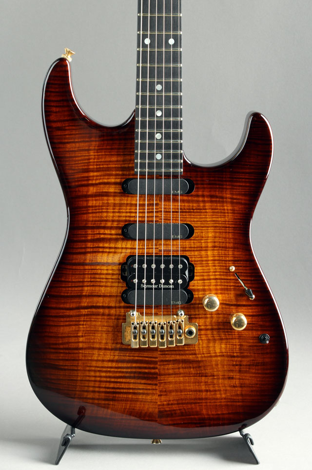 Custom Made Stratocaster Type