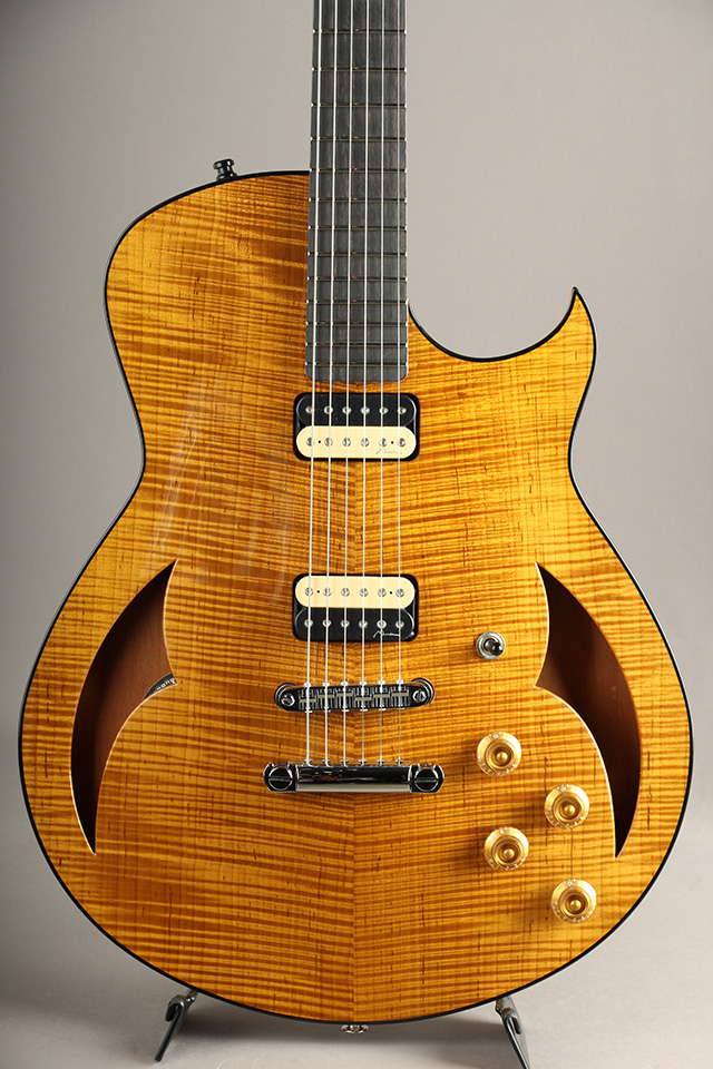 Semi-Hollow Torrefied Figured Maple Top / Amber
