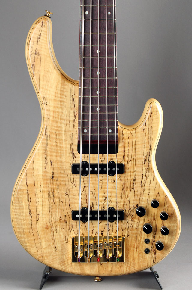 LS549 Spalted Tochi Top&Back