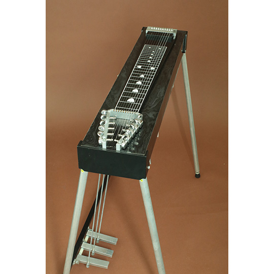 Carter Starter 10 String  Pedal Steel Guitar