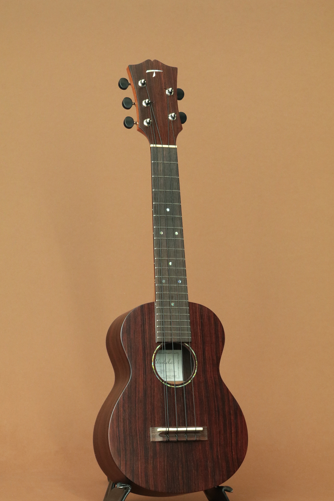 CS-400/5 5-Strings Concert