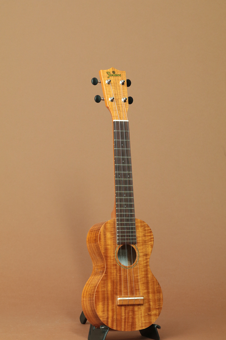 FLS-2G Soprano Long Neck