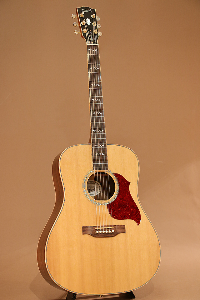 Songwriter Deluxe Standard AN