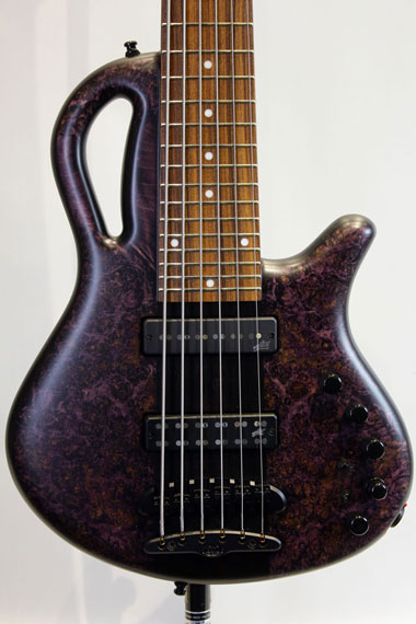 【現地選定木材採用】Caledonius 6st 4A Burl Maple Top(T-DPUR-M/BLK-M)【試奏動画有り】