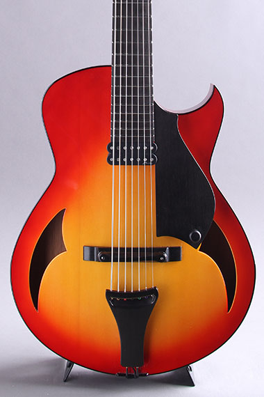 7-String 15 inch Archtop 25.5inch Scale 2010