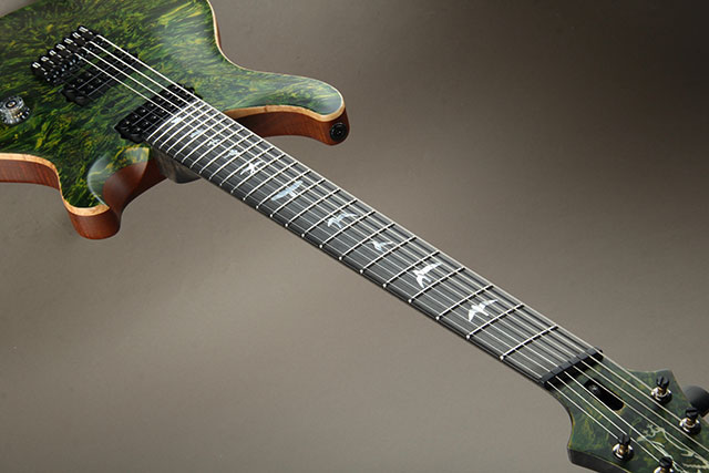 Paul Reed Smith Private Stock #5777 Custom24 7 String Multi-scale Burl Maple Top Rainforest ポールリードスミス サブ画像18