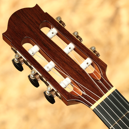 Water Road Guitars Pulchra 12F Joint Madagascar Rosewood ウォーターロード サブ画像7